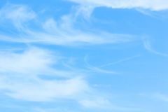 The blue backdrop has some clouds. Royalty Free Stock Photography