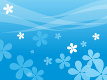 Blue background with blossoms Stock Image