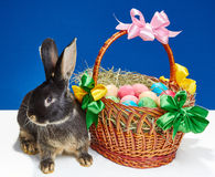 On a blue background bunny near a basket with Easter eggs Royalty Free Stock Photography