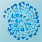 Blue background, butterflies flying in a spiral. In different tones of blue Stock Photography