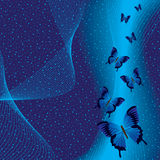 Blue background with butterfly. Night scene Royalty Free Stock Image