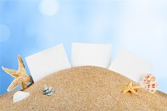 Starfish and seashells on sand isolated on white Royalty Free Stock Image