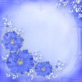 Blue background with flowers Stock Photos