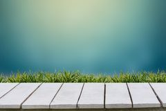 Blue background and grass on a white wood floor. stock photography