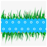 Blue background with green grass. Field of Grass, Vector Illustration Royalty Free Stock Photography