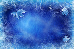 Blue background with ice and leaves. Blue  background with ice and leaves Royalty Free Stock Images