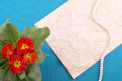 Blue background, old paper, string of pearls, red flowers. Postc Royalty Free Stock Image