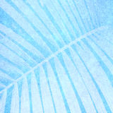 Blue background for the photo book Royalty Free Stock Photo