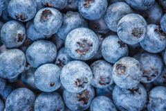 Blue background of ripe blueberries, bilberries. Blue background of ripe fresh blueberries, bilberries Stock Photography