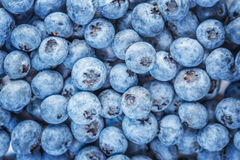 Blue background of ripe blueberries, bilberries. Blue background of ripe fresh blueberries, bilberries Stock Photos