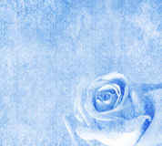 Blue background with rose. Blue wedding background with roses royalty free illustration