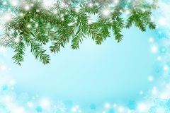Blue background with snow and fir-tree. Christmas. New Year. Nat. A blue background with branches of a Christmas tree and a frostbite. A cold winter morning Stock Photos