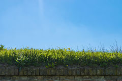 Blue background. With stone fence with grass on it Stock Photo