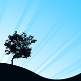 Blue background with tree. Background reflecting the rays of light Royalty Free Stock Image