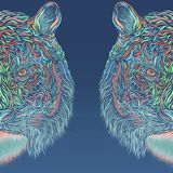 Blue background with two colorful halves of the head of a majestic tiger.  vector illustration