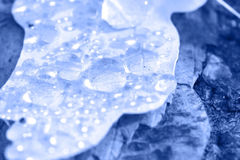 Blue background water drops Royalty Free Stock Photos