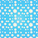 Blue background with white and dark blue flowers Royalty Free Stock Image