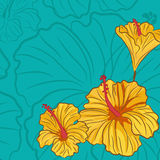 Blue background with yellow hibiscus Royalty Free Stock Images