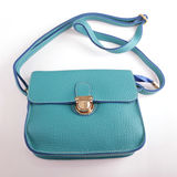 Blue bag Royalty Free Stock Image