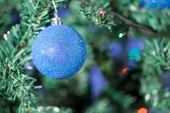 Blue ball on christmas tree Stock Image
