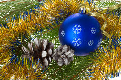 Blue ball and cones on fir tree branches Royalty Free Stock Image