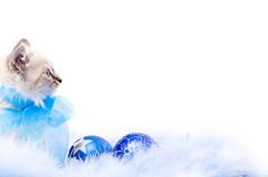 Blue ball, decoration of the new year Royalty Free Stock Images