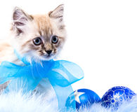 Blue Ball, Decoration Of The New Year Royalty Free Stock Photo