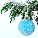 Blue ball on fir branch Stock Photo