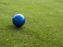 Blue ball on the golf course Royalty Free Stock Photos