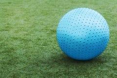Blue ball on green grass. Stock Photos