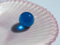 Blue ball on the half shell Royalty Free Stock Photos