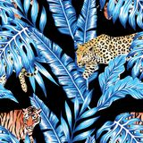 Blue banana leaves tiger leopard seamless black background Royalty Free Stock Images