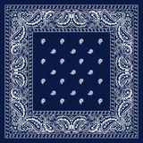 Blue Bandana Stock Photography