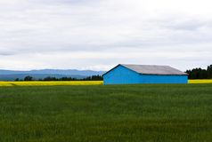 Blue Barn in a field Royalty Free Stock Photos