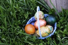 Blue basket with easter eggs standing on a green grass near the stump royalty free stock photos