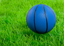A blue basketball on a green lawn Stock Photos