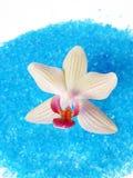 Blue bath sea salt with orchid Stock Photos