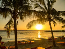 Blue Bay Beach Sunset - palm tree Stock Photo