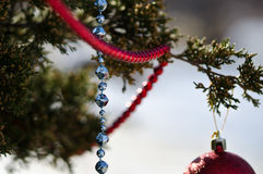 Blue Beads Strung on the Outdoor Christmas Tree Stock Photo
