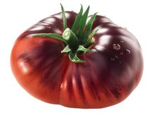 Free Blue Beauty Heirloom Tomato, Ripe With Anthocyanin Shoulders,  Isolated Stock Photos - 191242143