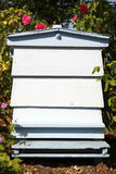 Blue beehive Royalty Free Stock Images