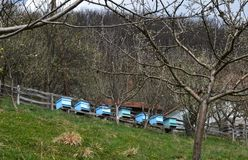 Beehives on the slope. Blue beehives on the slope stock photography