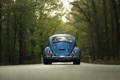 Blue Beetle Car on Gray Asphalt Road Between Green Leaf Trees Royalty Free Stock Photos