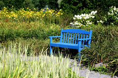 Blue Bench Royalty Free Stock Image