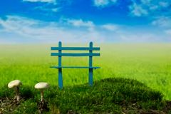 Blue bench and mushrooms on the green meadow at the sunny, cloudy day. Bench and mushrooms on the green moss meadow at the sunny, cloudy day Stock Photo