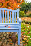 Blue Bench Orange Autumn Tree Stock Image