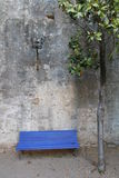 Blue bench and tree Royalty Free Stock Photo