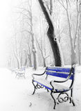Blue benches in the fog Royalty Free Stock Photos
