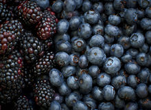 Blue Berries and Black Berries. Detail of juicy, ripe black berries and blueberries Stock Photography