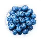 Blue berries. In a glass cup, isolated on white royalty free stock photos